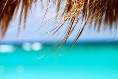 Sonho dos trópicos Imagem de Stock Royalty Free