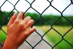 Sonho a estar livre! imagens de stock royalty free