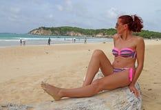 Sonho tropical Fotos de Stock Royalty Free