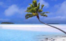 Sonho tropical Imagens de Stock Royalty Free