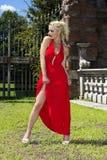 Sonho vermelho Foto de Stock Royalty Free