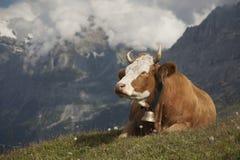 Sonhos alpinos Imagem de Stock Royalty Free