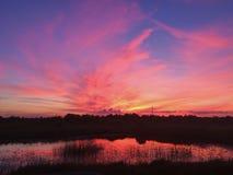 Sonhos cor-de-rosa Foto de Stock Royalty Free