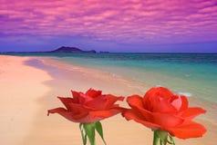Sonhos da praia Fotografia de Stock Royalty Free
