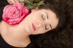 Sonhos de Rosa. Imagens de Stock