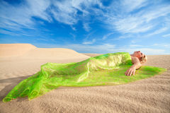 Sonhos do deserto Imagens de Stock Royalty Free