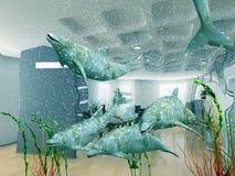 Sonhos do escritório Imagem de Stock