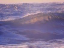 Sonhos do mar imagens de stock