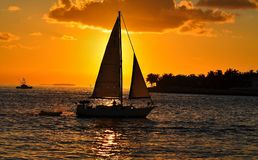 Sonhos do por do sol Foto de Stock