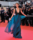 Sonia Roland. At the premiere of Che at the 61st Annual International Film Festival de Cannes.  May 21, 2008  Cannes, France. Picture: Paul Smith / Featureflash Royalty Free Stock Images