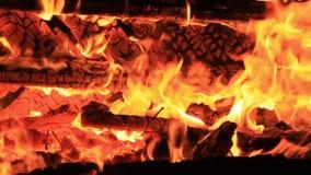 Sonido de los grillos de la noche, de traslapar del agua y del chisporroteo del fuego V?deo extremo del primer de una hoguera Que
