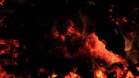 Sonido Vídeo extremo del primer del carbón de leña y de las ascuas después de quemar el banco de la comida campestre en el extrem