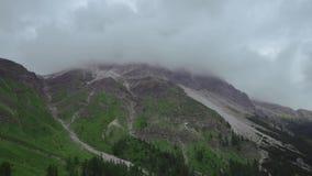 Sonidos de las campanas de pastar vacas en el medio de las montañas verdes de las montañas italianas en el verano almacen de video