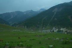 Sonmarglandschap in Kashmir-12 Royalty-vrije Stock Foto