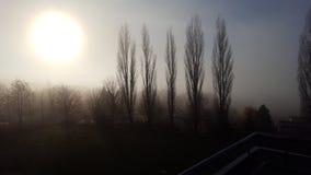 Sonne im Nebel. Zur Jahreszeit Winter stock image