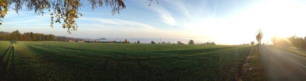 Sonne. Morgen stimmung grün Royalty Free Stock Photos