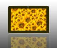 Sonneblumen im theTablet Computer Stockbilder