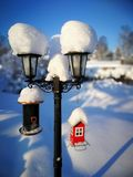 Sonnen des Wintertages lizenzfreie stockfotos