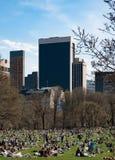 Sonnen-Sucher, die Central Park in New York genießen lizenzfreies stockbild