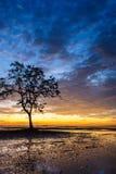 Sonnenaufgänge morgens Himmel, Wolken und schönes Stockbilder