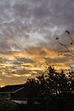 Sonnenaufgang über Apley Stockfoto