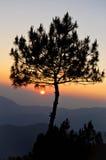 Sonnenaufgang über dem Gebirgszug Stockbild