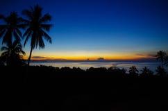 Sonnenaufgang über dem Meer mit Palmenschattenbild Stockbild