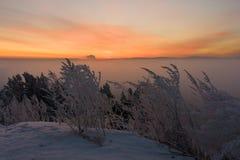 Sonnenaufgang über dem Nebel lizenzfreie stockfotos