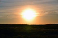 Sonnenaufgang über dem saftigen Sommerfeld stockfotografie