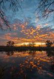 Sonnenaufgang über dem See mit Reflexion von bloßen Bäumen im Wasser Lizenzfreie Stockbilder