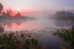 Sonnenaufgang über dem See mit Reflexion von bloßen Bäumen im Wasser Stockfotografie