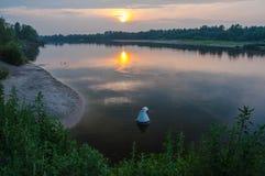 Sonnenaufgang über dem See mit Reflexion von bloßen Bäumen im Wasser Stockbild