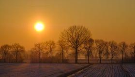 Sonnenaufgang über den Schnee durchgesetzten Forderungen stockfotografie