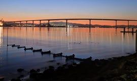 Sonnenaufgang über der Coronado-Brücke in San Diego, Kalifornien stockfotos
