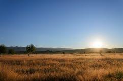 Sonnenaufgang über einem Feld Stockfoto