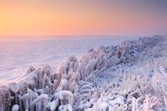 Sonnenaufgang über einem gefrorenen See in den Niederlanden lizenzfreie stockfotografie