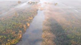 Sonnenaufgang über einem nebelhaften Fluss mitten in dem Feld stock footage