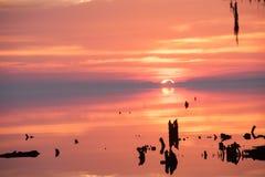 Sonnenaufgang über Fluss nahe dem Ufer Stockbilder