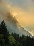 Sonnenaufgang über Gebirgsrücken mit Kiefern Lizenzfreies Stockbild