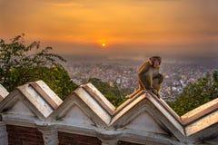 Sonnenaufgang über Kathmandu, Nepal, angesehen vom Swayambhunath-te Lizenzfreie Stockbilder