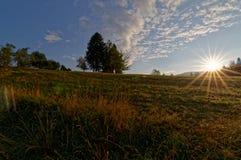 Sonnenaufgang über Landwiese Bäume im Hintergrund, schöne Wolken auf dem Himmel Stockbilder
