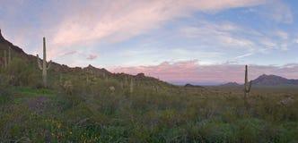 Sonnenaufgang über Naturreservat Stockfoto