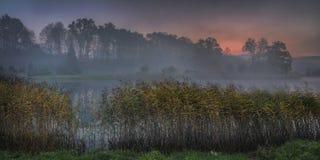 Sonnenaufgang über ruhigem Teich lizenzfreie stockbilder