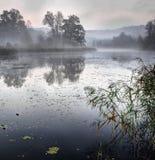 Sonnenaufgang über ruhigem Teich stockbild