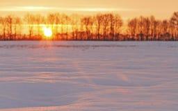 Sonnenaufgang über schneebedecktem Feld stockbild