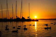 Sonnenaufgang über Segelbooten stockbilder