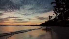 Sonnenaufgang über Tropeninselstrand- und -palmen stock video