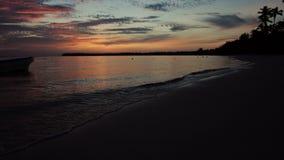Sonnenaufgang über Tropeninselstrand- und -palmen stock footage