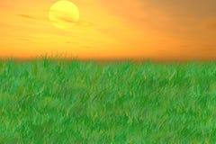 Sonnenaufgang über wellenartig bewegenden Wiesen stockbild