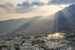 Sonnenaufgang über YuanYang-Reisterrassen in Yunnan, China, eine der spätesten UNESCO-Welterbestätten stockbild